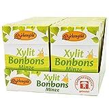 Birkengold Xylit Bonbons Minze zuckerfrei, 12er Pack | zahnpflegend | zuckerfrei | mit 100 % europäischem Xylit | natürliche Zutaten, 1305